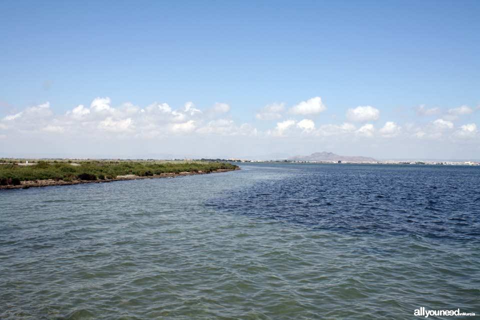 Marina del Carmolí