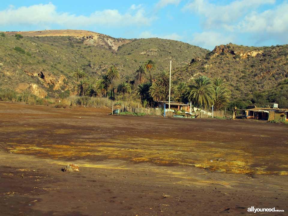 Playa del El Gorguel