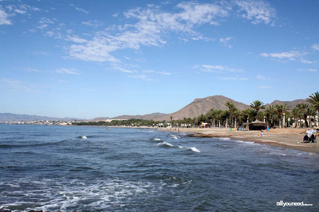 Playa San Ginés