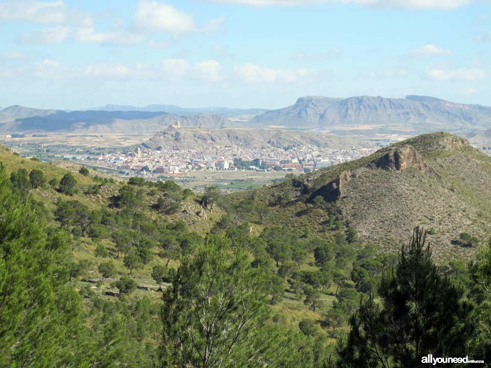 Vista de Jumilla desde el Monasterio de Santa Ana