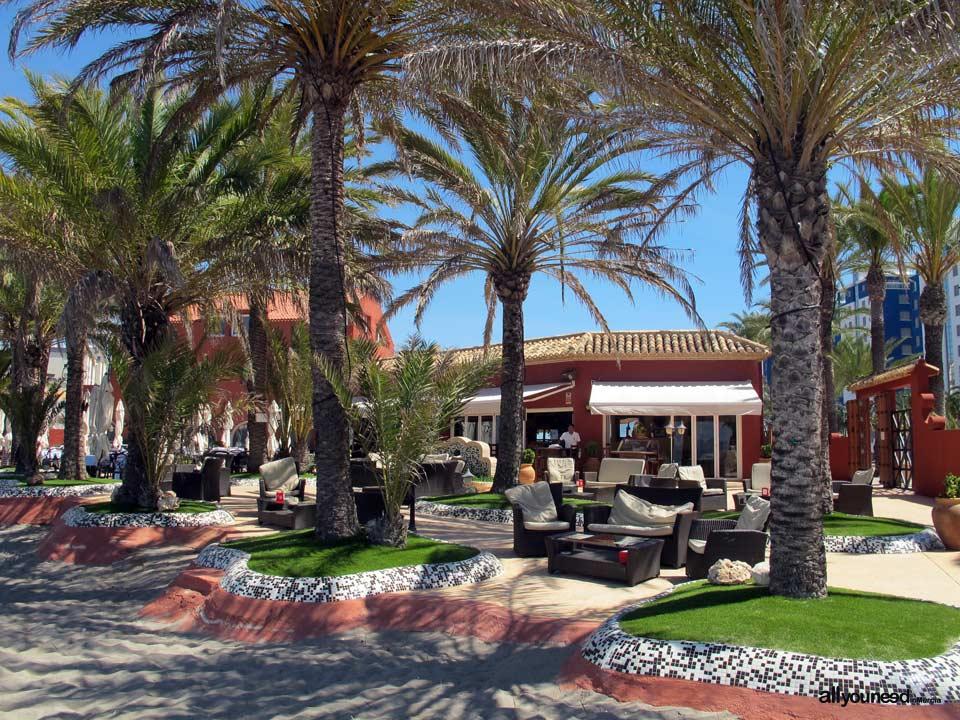 Restaurante Bar Escuela de Pieter