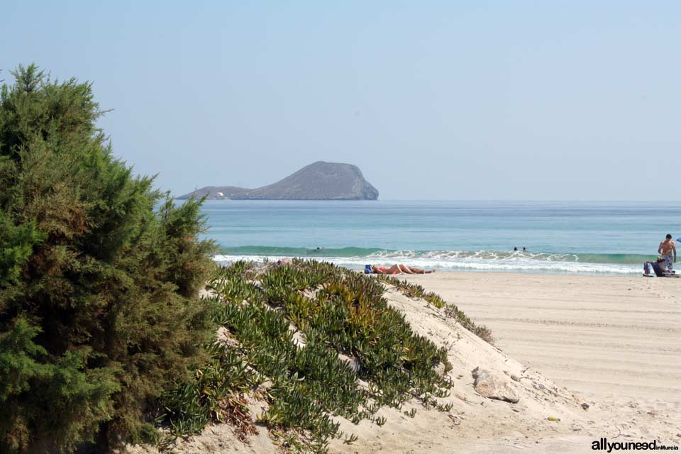 Playa el Pedrucho