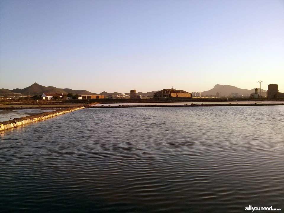 Salinas de Marchamalo