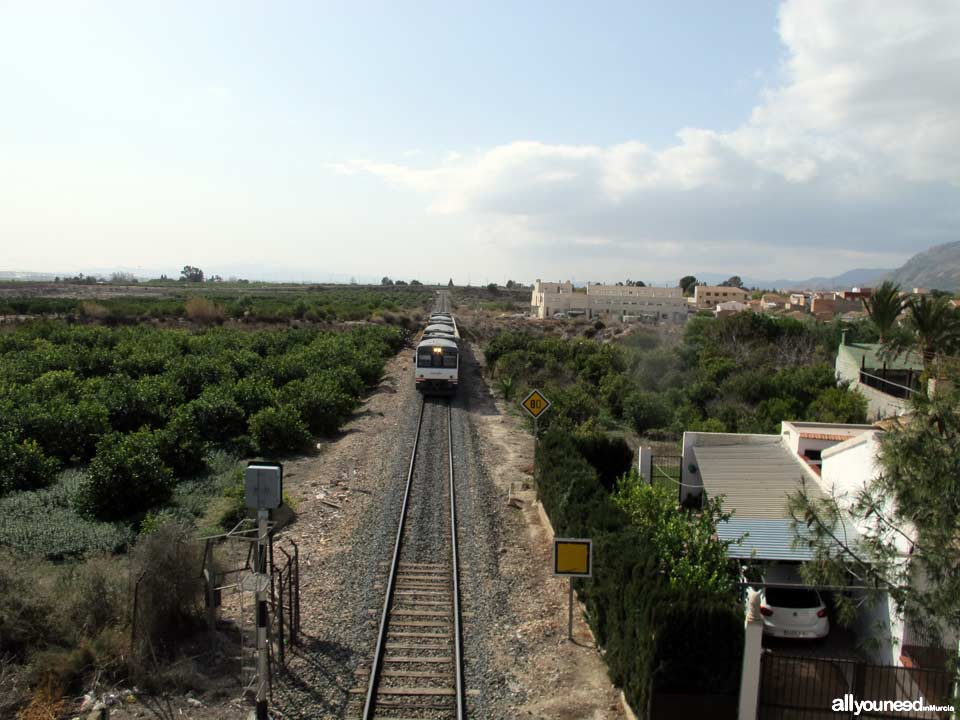 Tren a su paso por Librilla