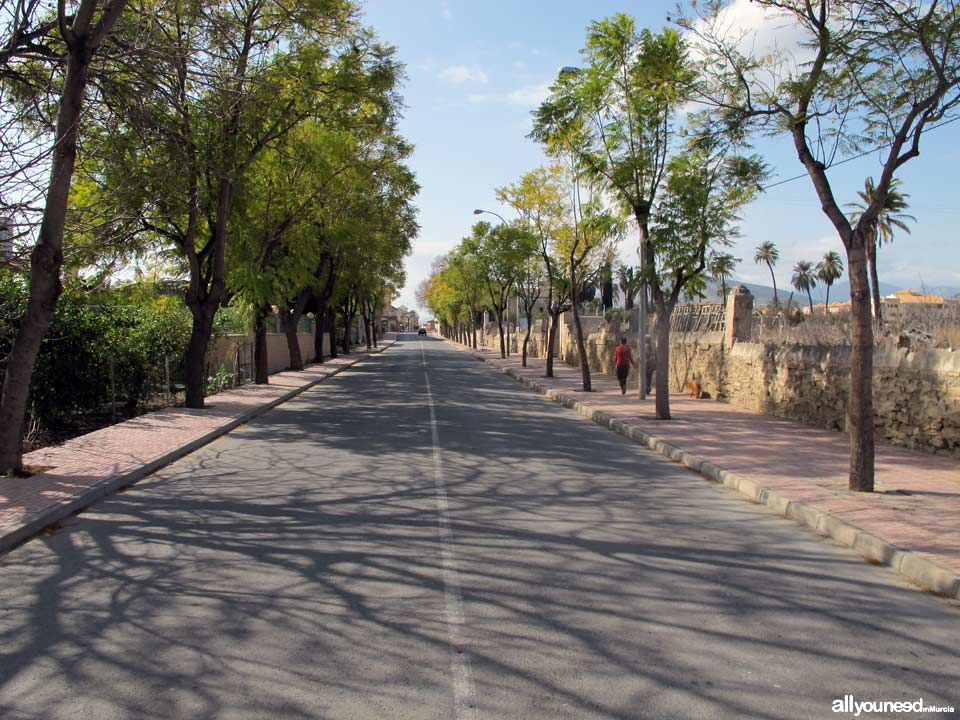 Entrada a Librilla desde Murcia. Avda. de las Fuerzas Armadas
