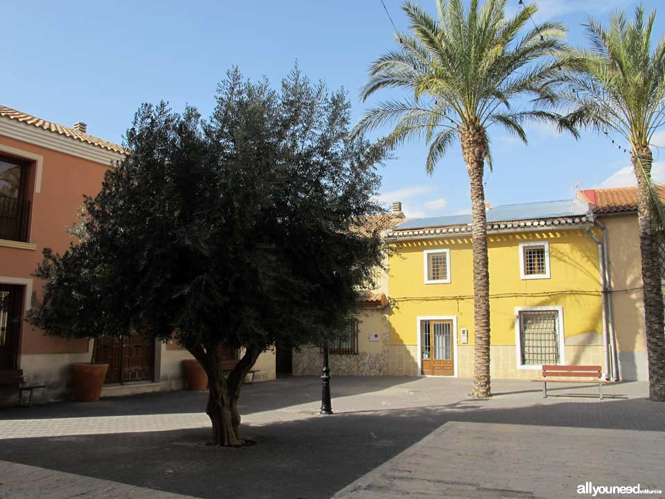 Plaza de D. Francisco Gil Guillamón