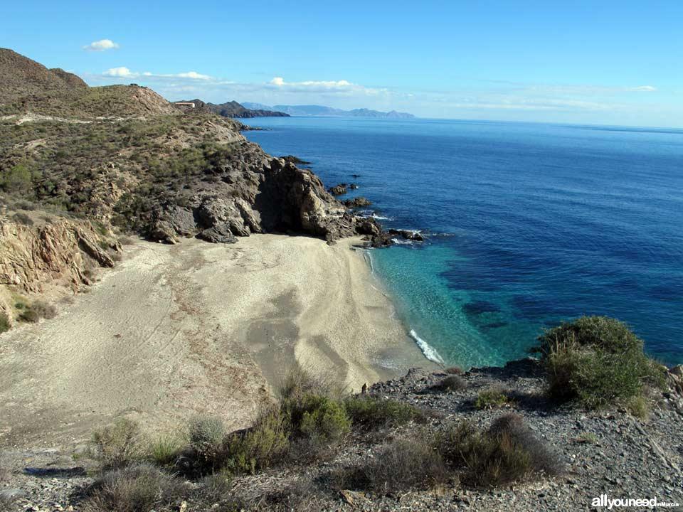 Playa Junquera