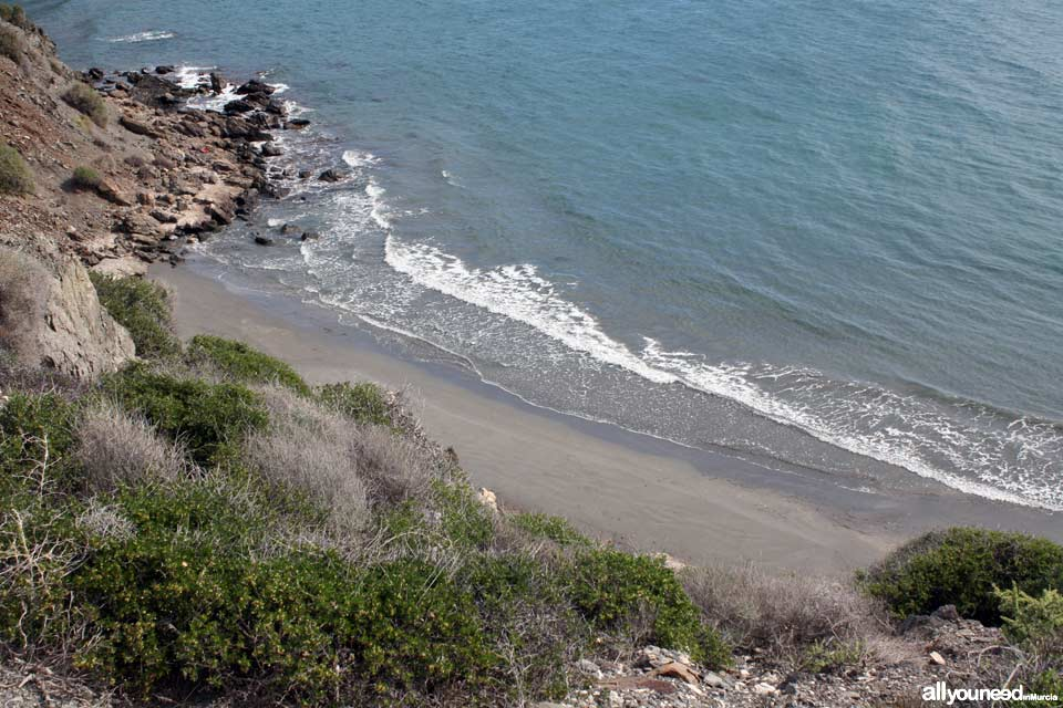 Baja Mar Beach - Ciscar Cove
