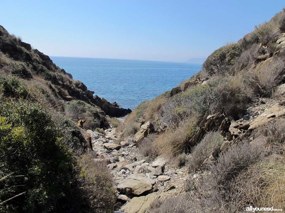 Playa de San Pedro. Playas de Lorca