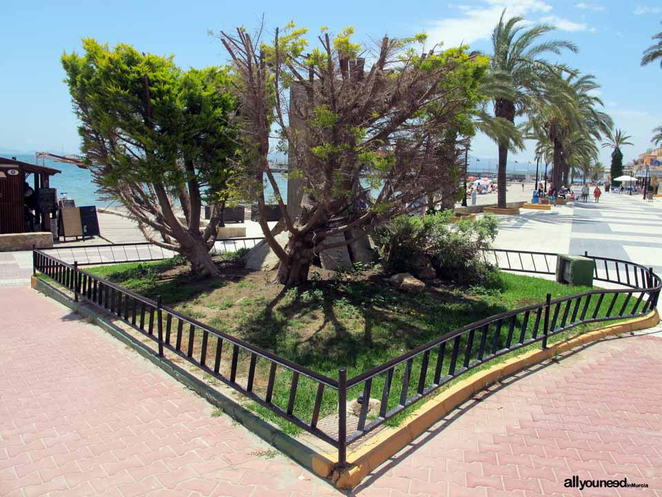 Carrión Beach