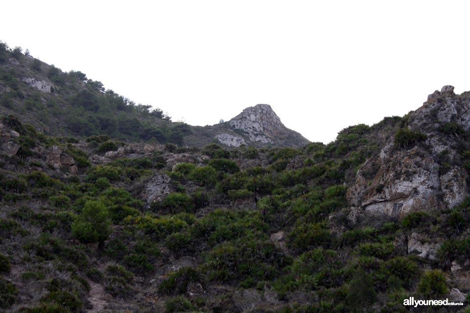 Pico Peña del Águila. Los Belones