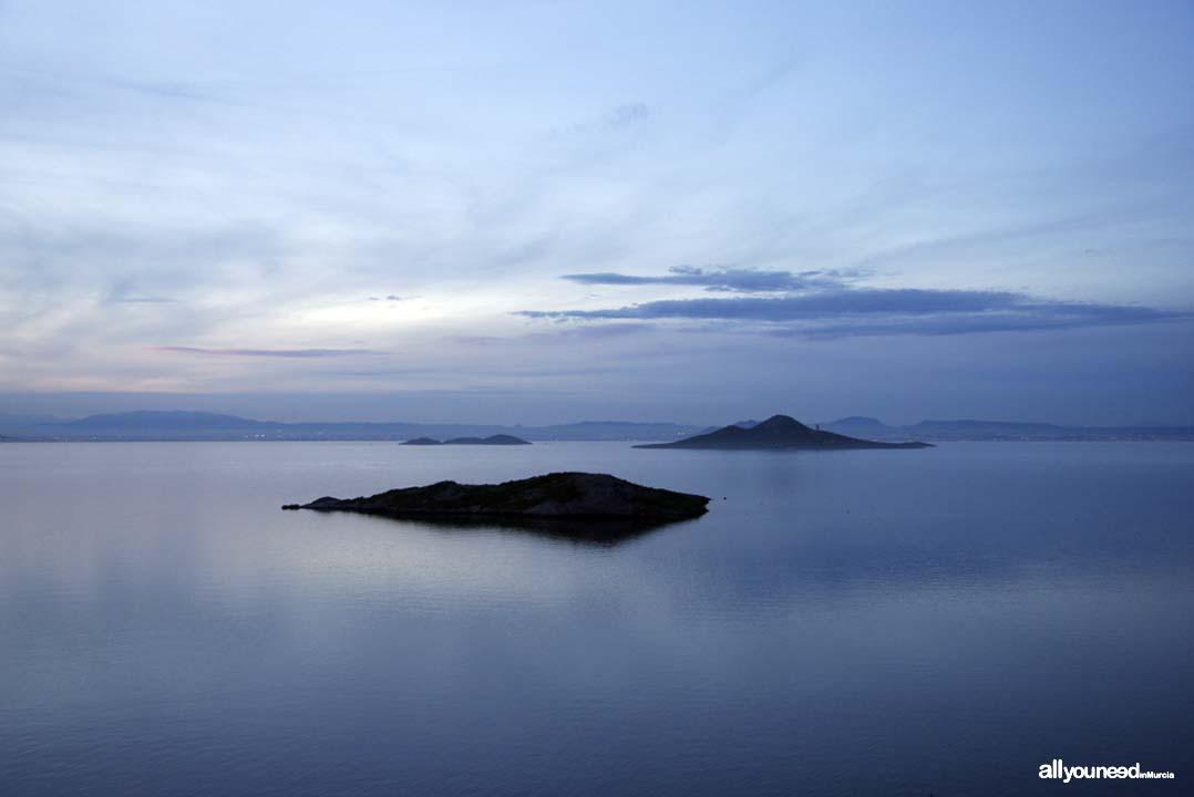 Islas Sujeto, Barón y Perdiguera en el Mar Menor