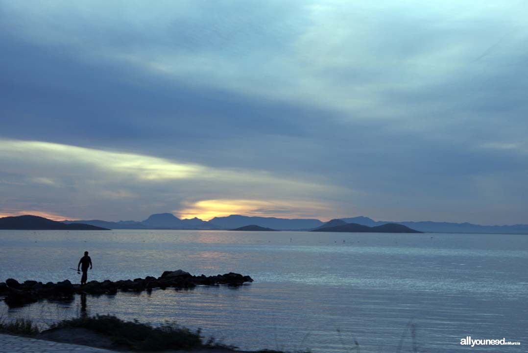 Perdiguera Island in Mar Menor