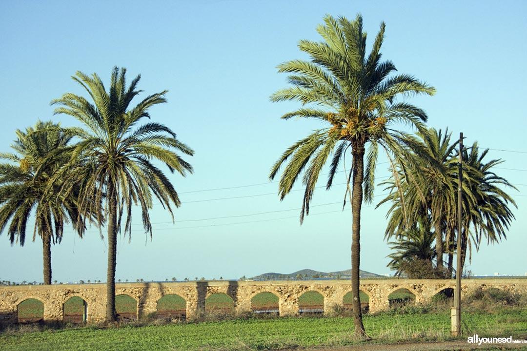 Salinas de Lo Poyo