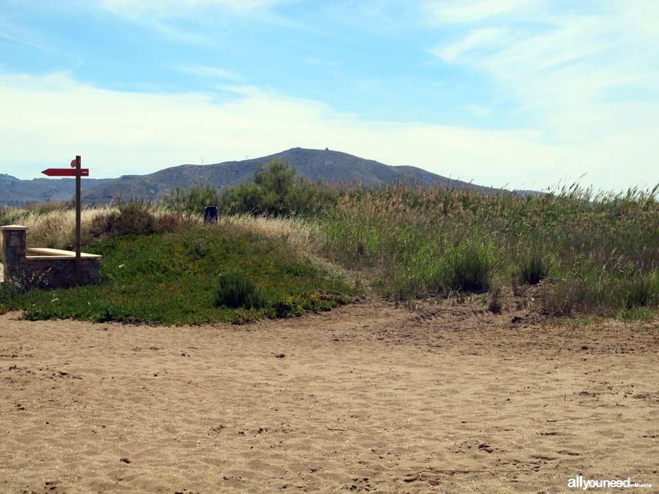 Arenal Beach. Los Nietos