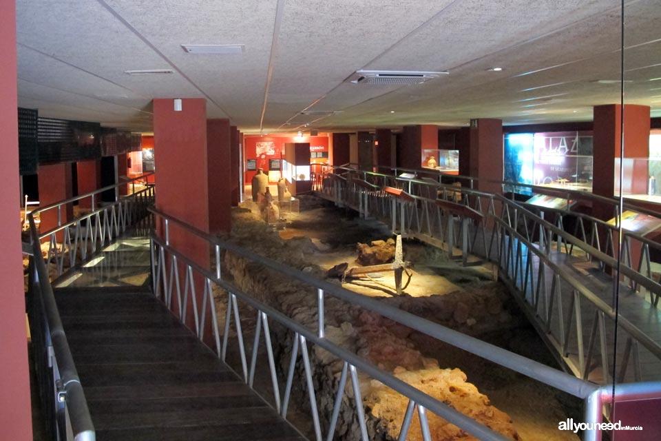 Factoría Romana de Salazones y Museo Arquelógico