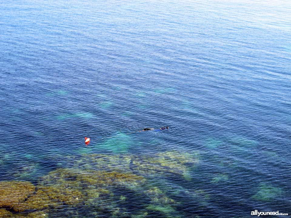 Desnuda Cove