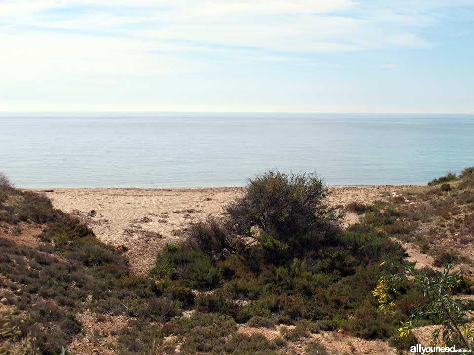 Barranco Ancho Beach