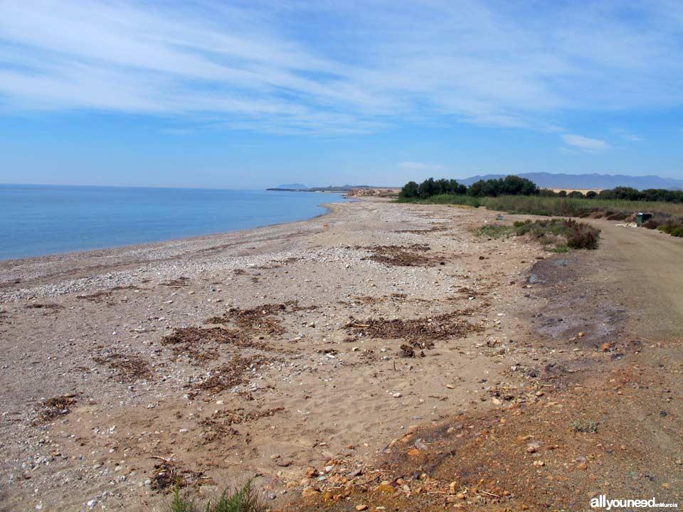 Playa Cabezo de la Pelea. Playas de Mazarrón