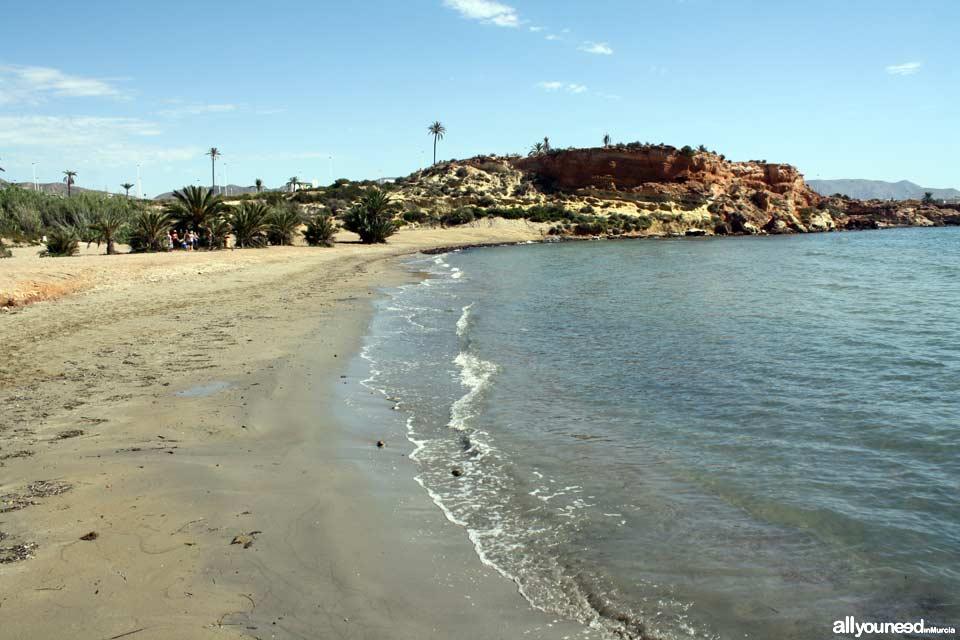 Negra Beach