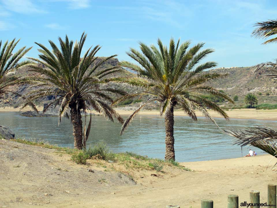 Playa de Percheles
