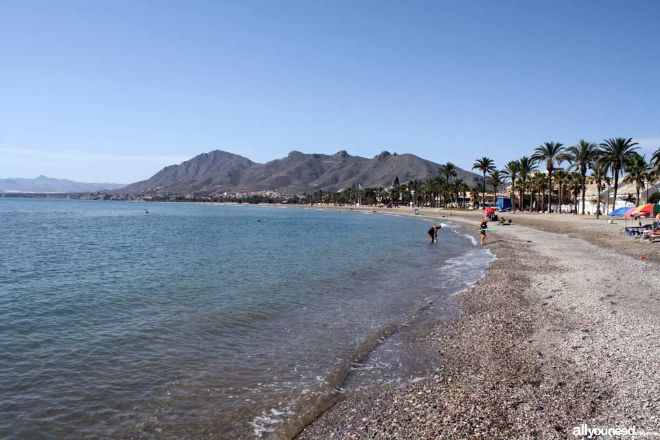 El Castellar Beach
