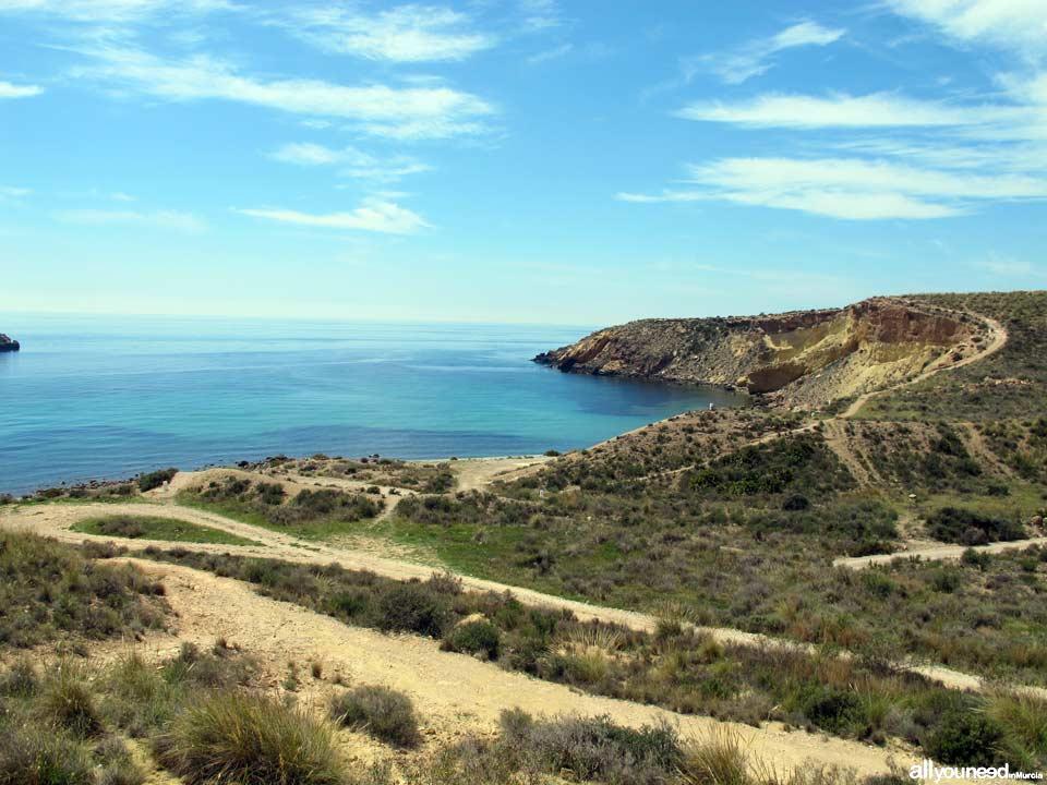 Cala Amarilla. Playas de Mazarrón