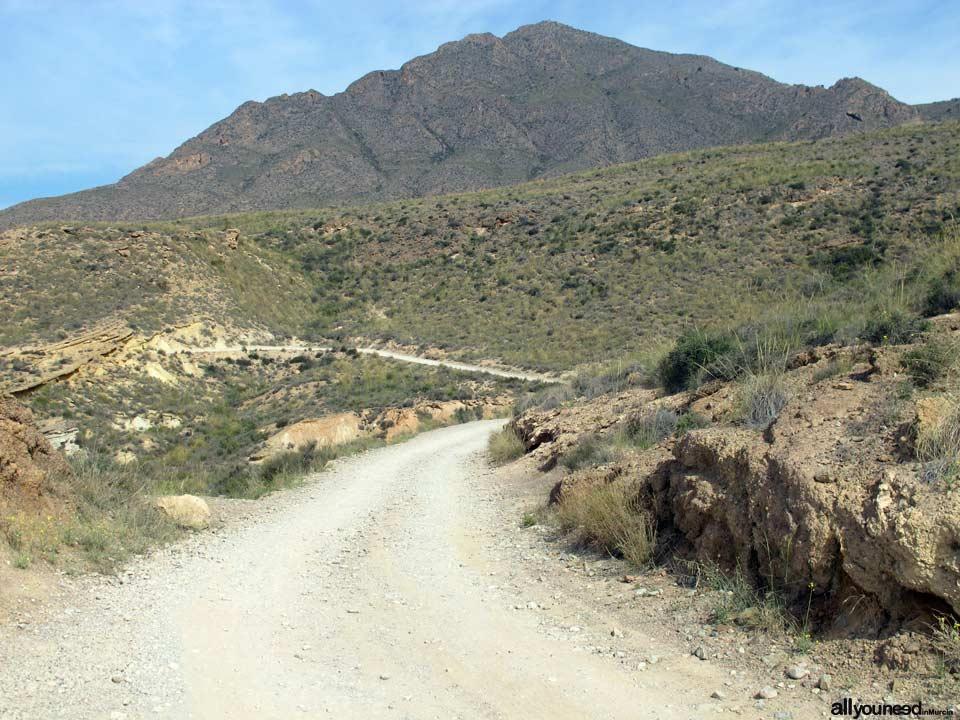 Sierra de las Moreras. Mazarrón