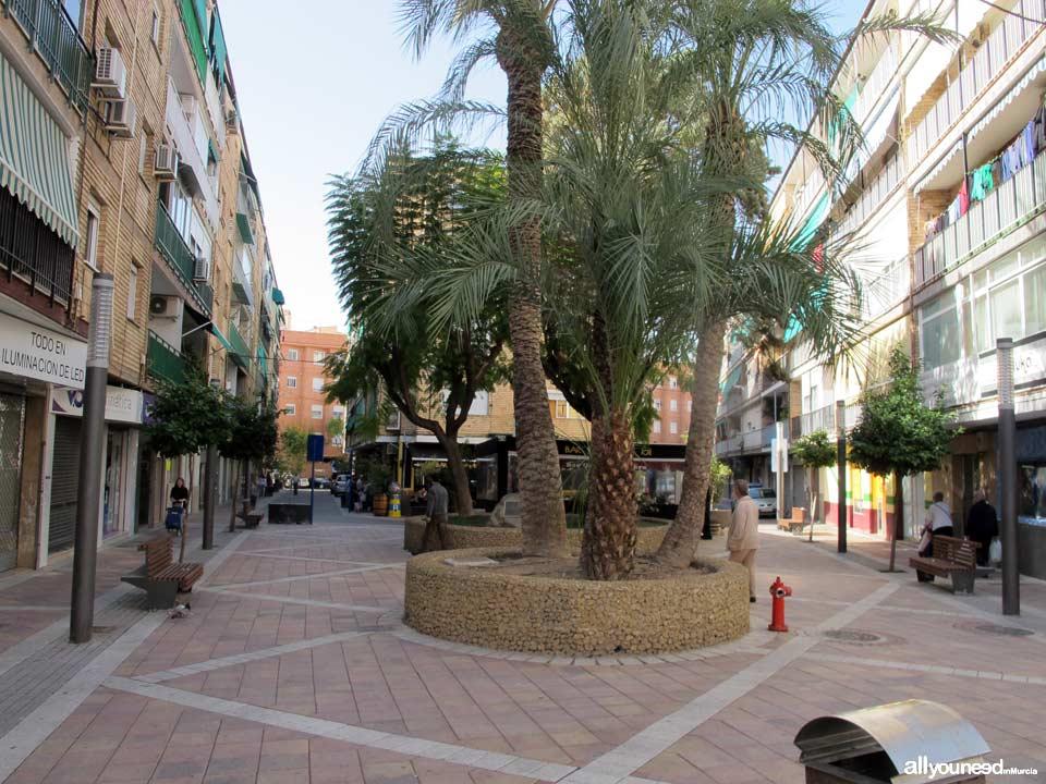 Calle Violetas