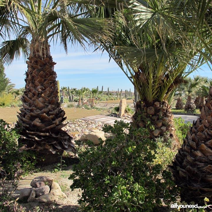 Mosa Trajectum. Golf Courses in Murcia -Spain-