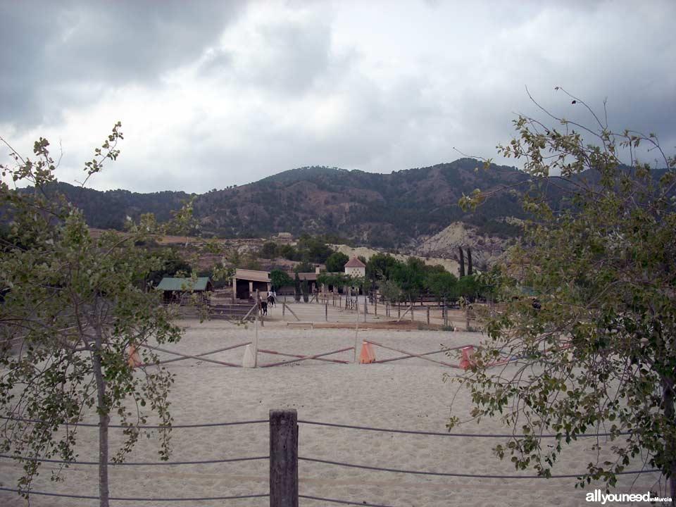 Finca la Constancia - Casas rurales en Murcia, Hípica, Tiro con arco