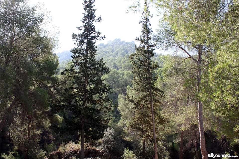 Albergue Juvenil El Valle en la Alberca