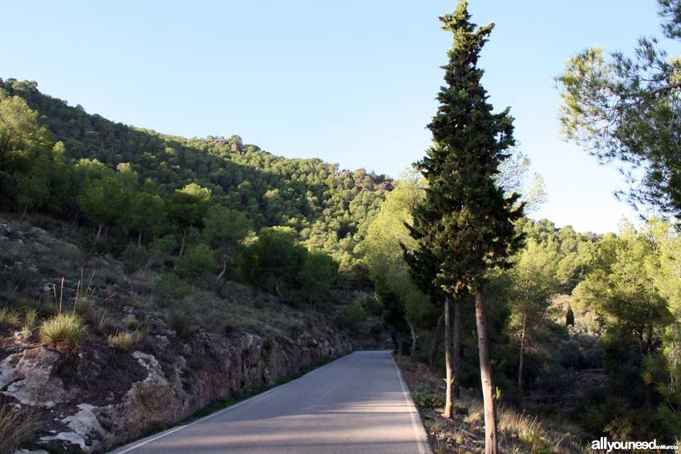 Excursión por la Sierra del Valle. Carretera hacia Santo Angel