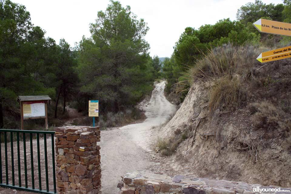 Cuevas del Buitre pathway.PR-MU35