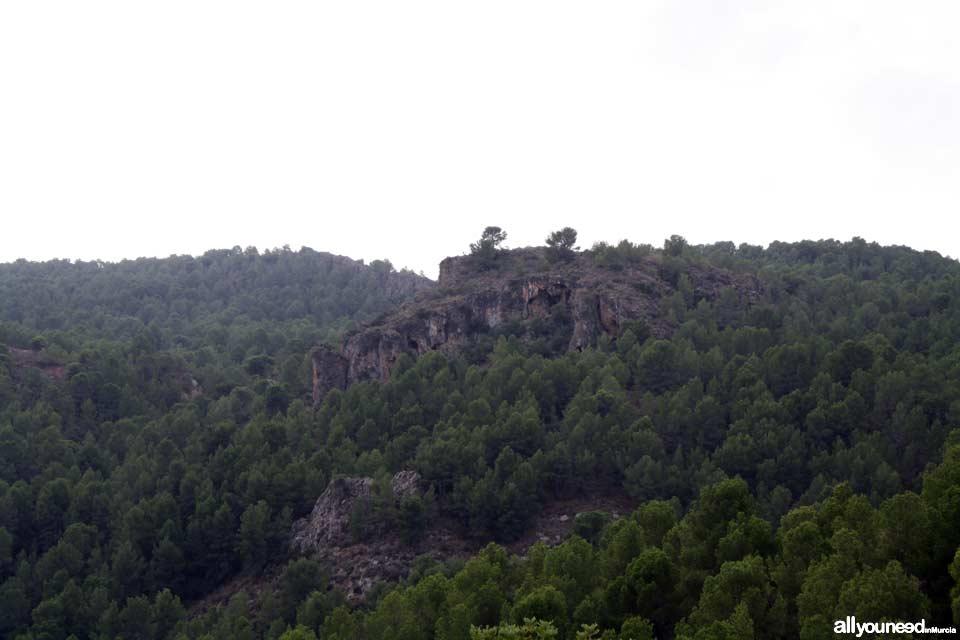 Sendero Cuevas del Buitre.PR-MU35. Senderismo por El Majal Blanco