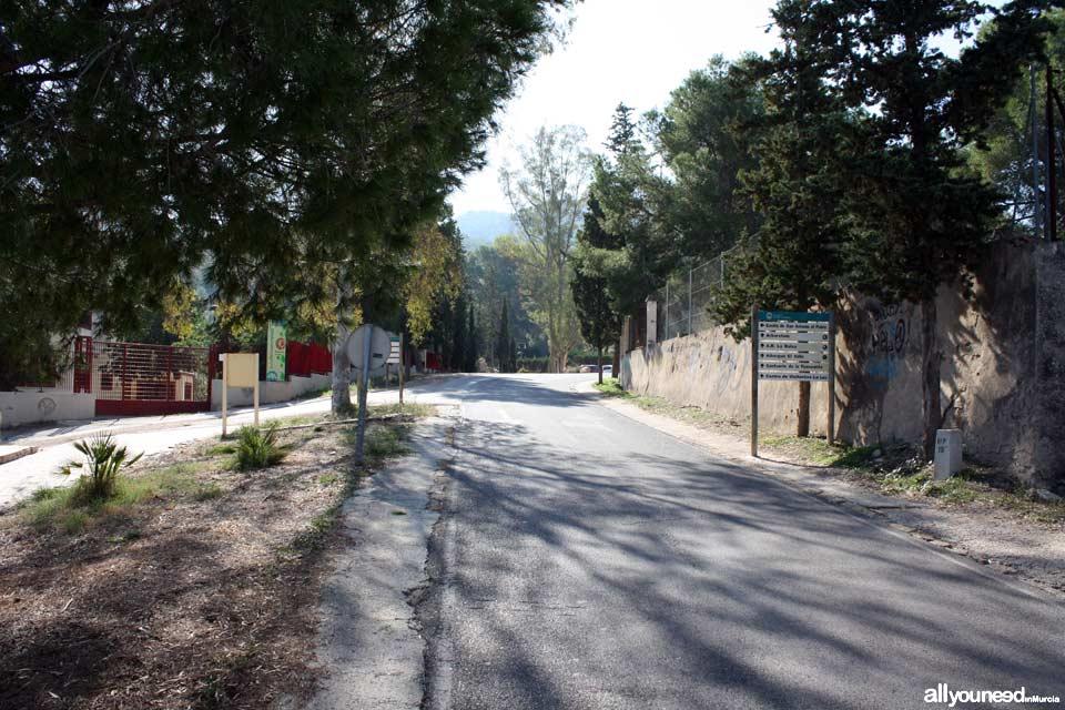 Aula de Naturaleza El Valle. Arboretum
