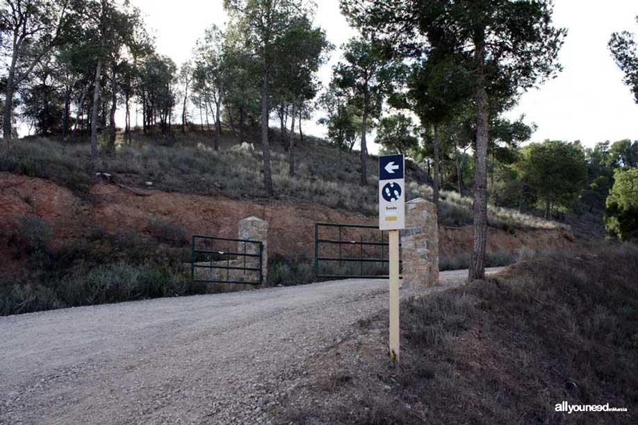 Ruta Cresta del Gallo-Pico del Relojero. Senda de acceso al Pico del Relojero. Senderismo en Murcia