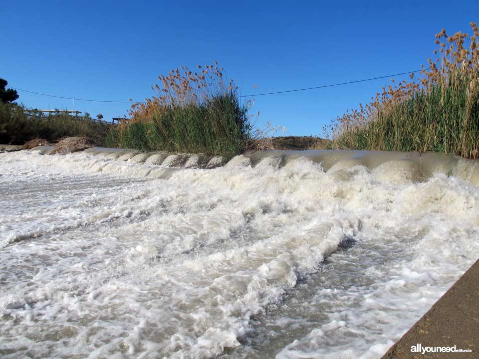 Río Segura por el municipio de Murcia. Contraparada