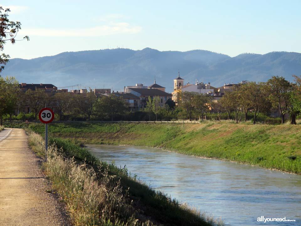 Río Segura por el municipio de Murcia