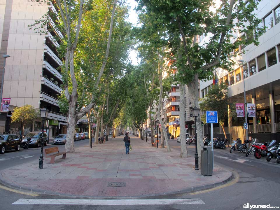 Streets in Murcia. Paseo de Alfonso X el Sabio