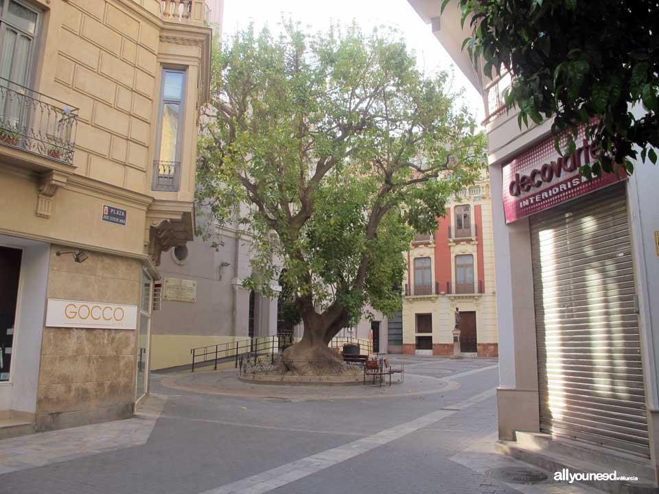 Calles de Murcia. Plaza de San Bartolomé