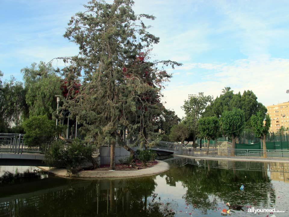 Jardín de Fofo