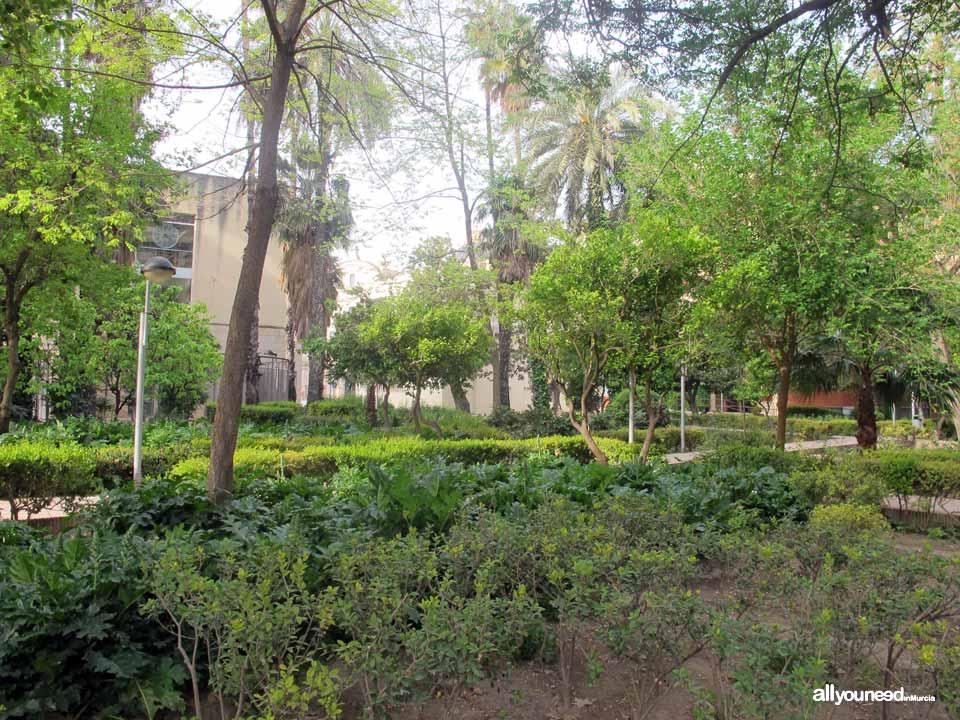 Salitre Garden