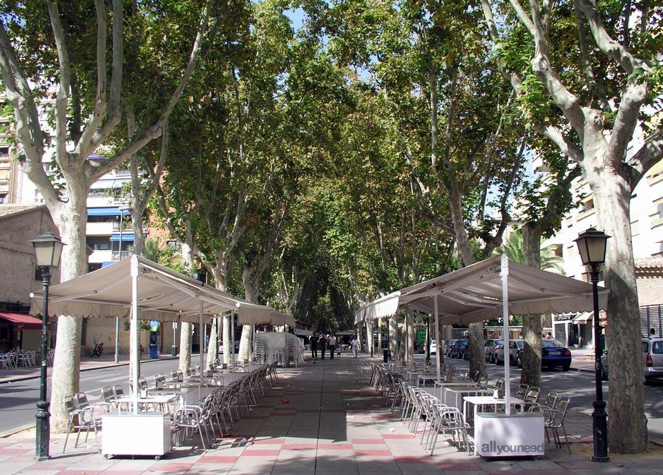 Paseo de Alfonso X in Murcia