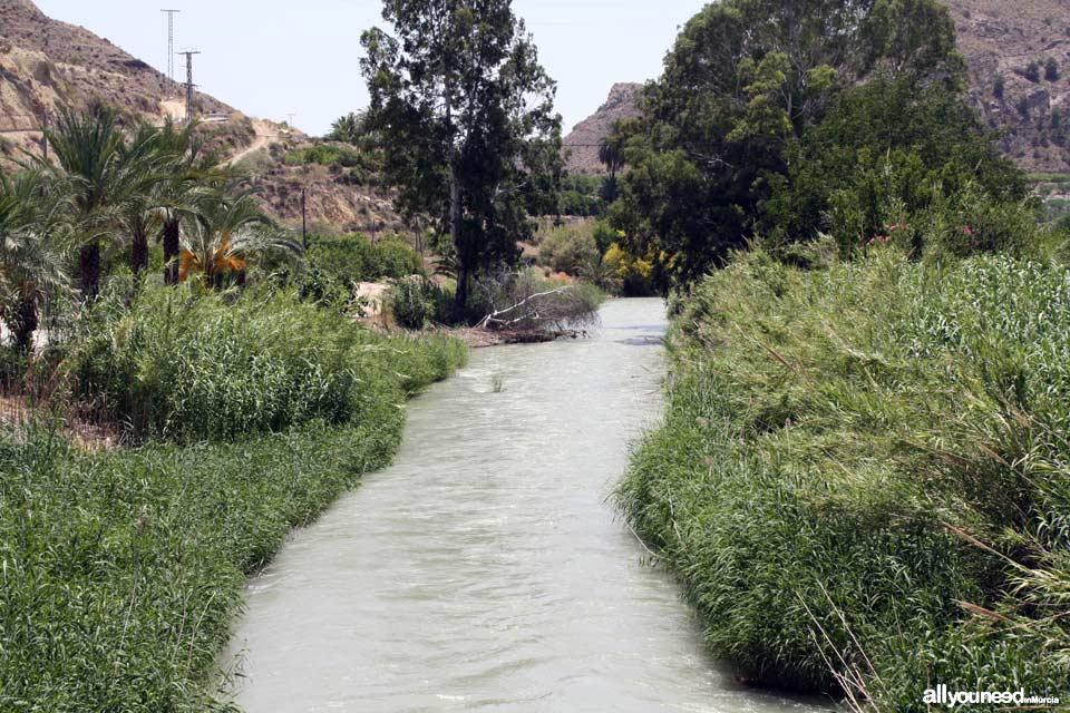 Río Segura en Ojós