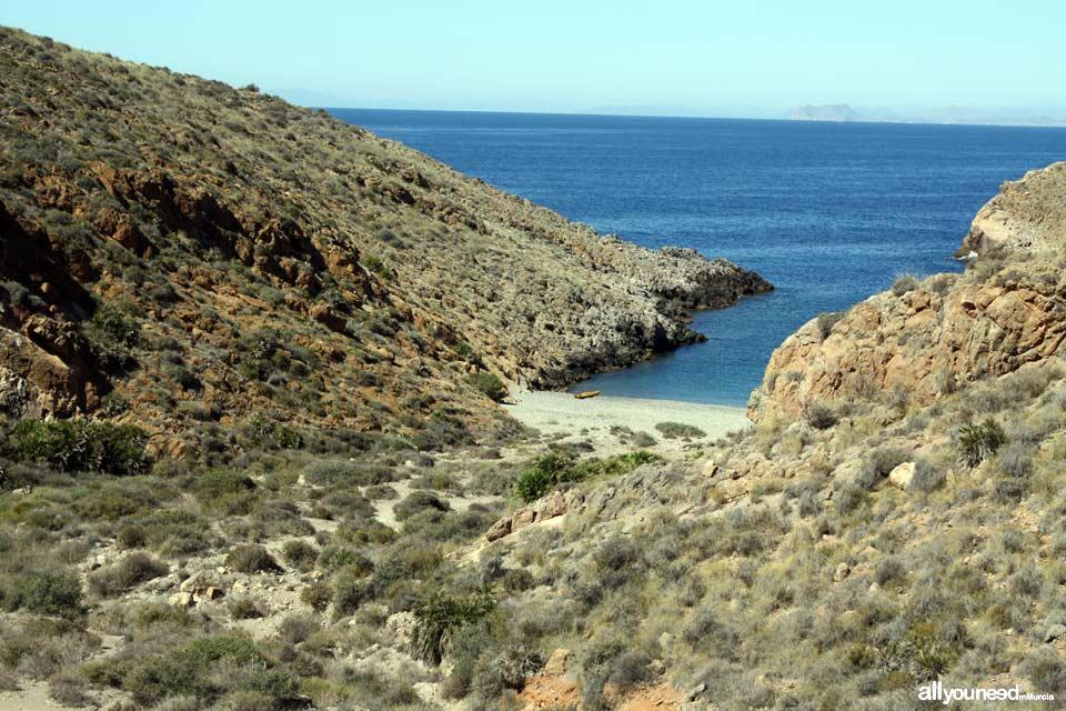 Ruta a Cala Cerrada. Cabo Tiñoso