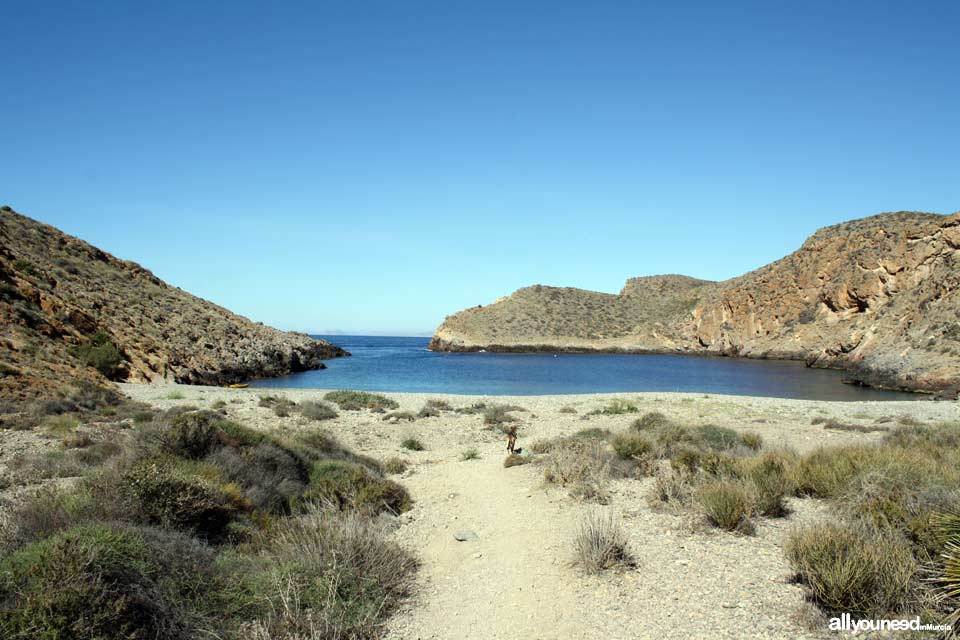 Route to Cerrada Cove. Tiñoso Cape, Cerrada Cove