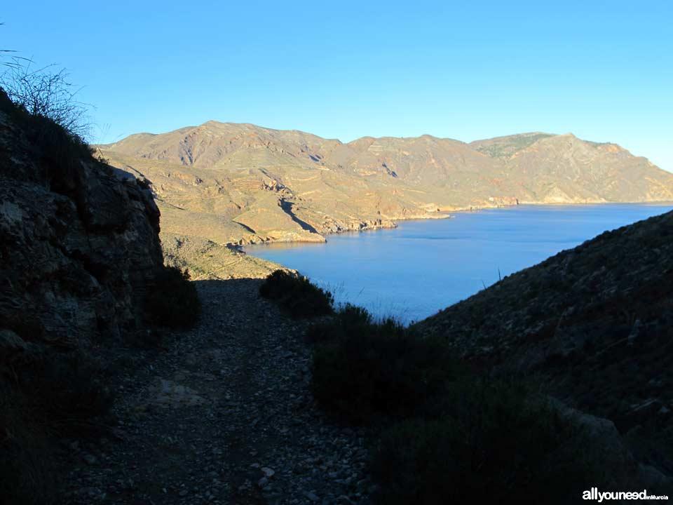 Ruta Cabo Tiñoso (Castillitos)- Cala Salitrona. 1 SL-MU