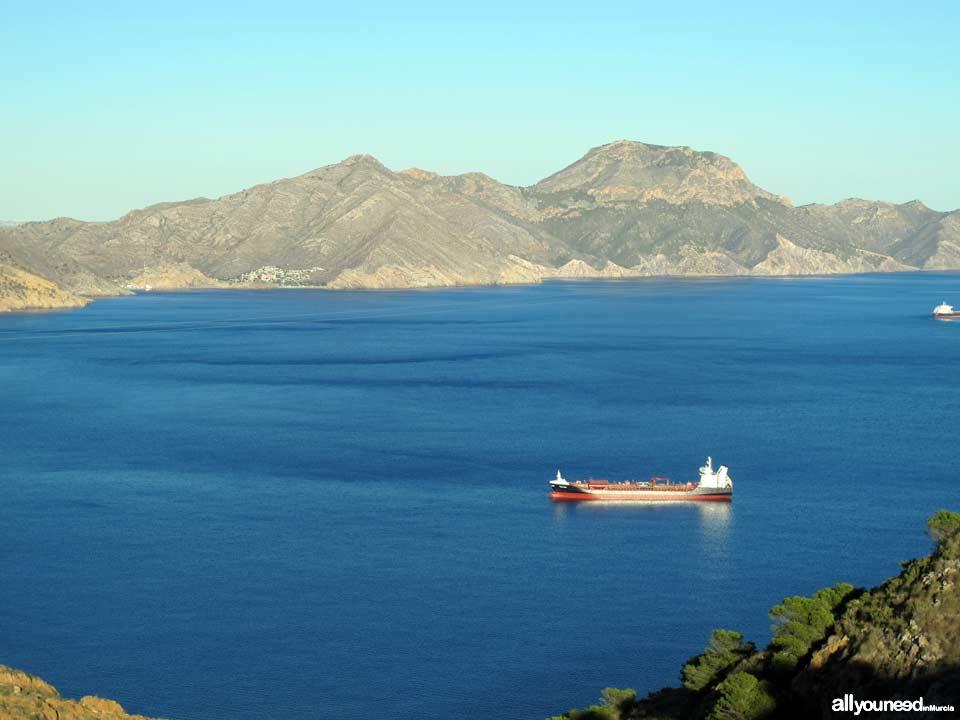 Sierra de la Muela, Cabo Tiñoso y Roldán