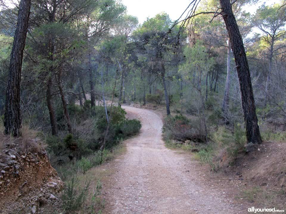Parque Regional de Sierra Espuña